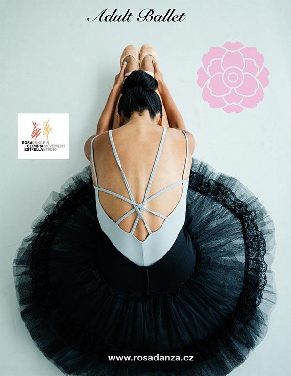 Adult Ballet Poster Ballerina